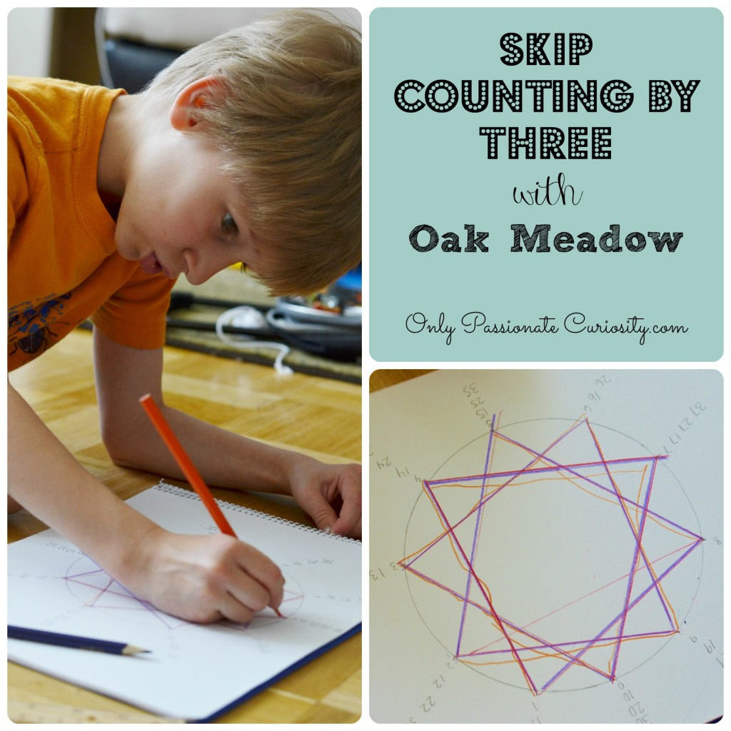 Math Skip Counting Patterns Oak Meadow