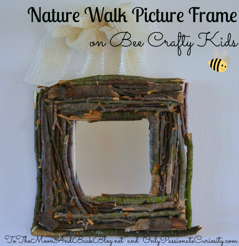 Make A Nature Walk Picture Frame Only Passionate Curiosity