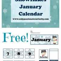 FREE January Pocket Chart Calendar Cards {Snow Themed!}