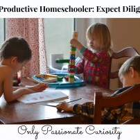 Expecting Diligence- the productive homeschooler