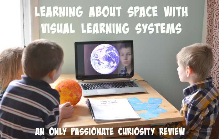 Visual Learning Systems Review