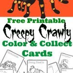 Creepy Crawly Color and Collect Cards