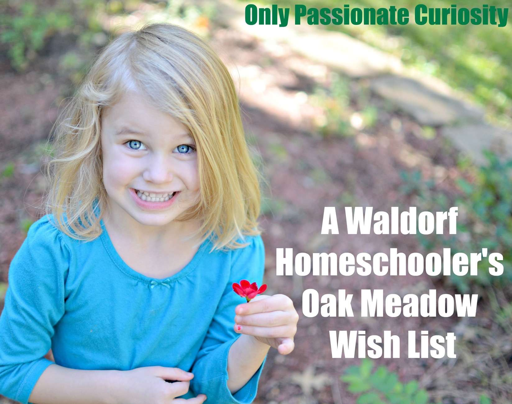 A Waldorf Homeschooler's Oak Meadow Wishlist