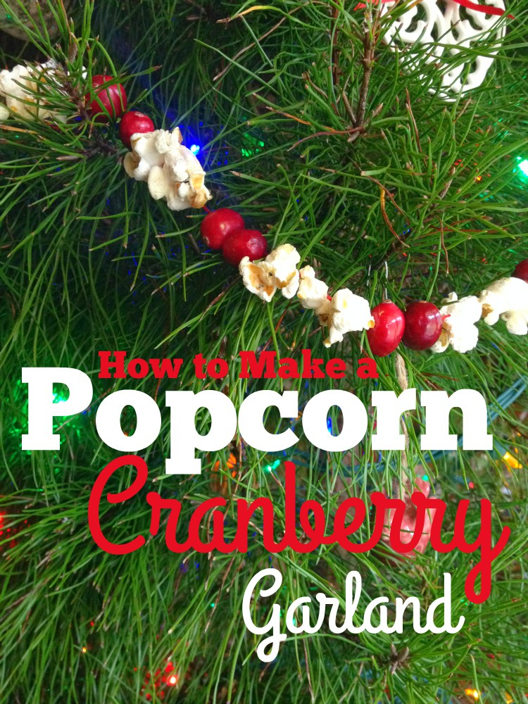 How to Make a Popcorn Cranberry Garland