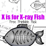 X is for X-Ray Fish {ABCs for Me}