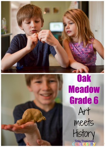Oak Meadow Grade 6