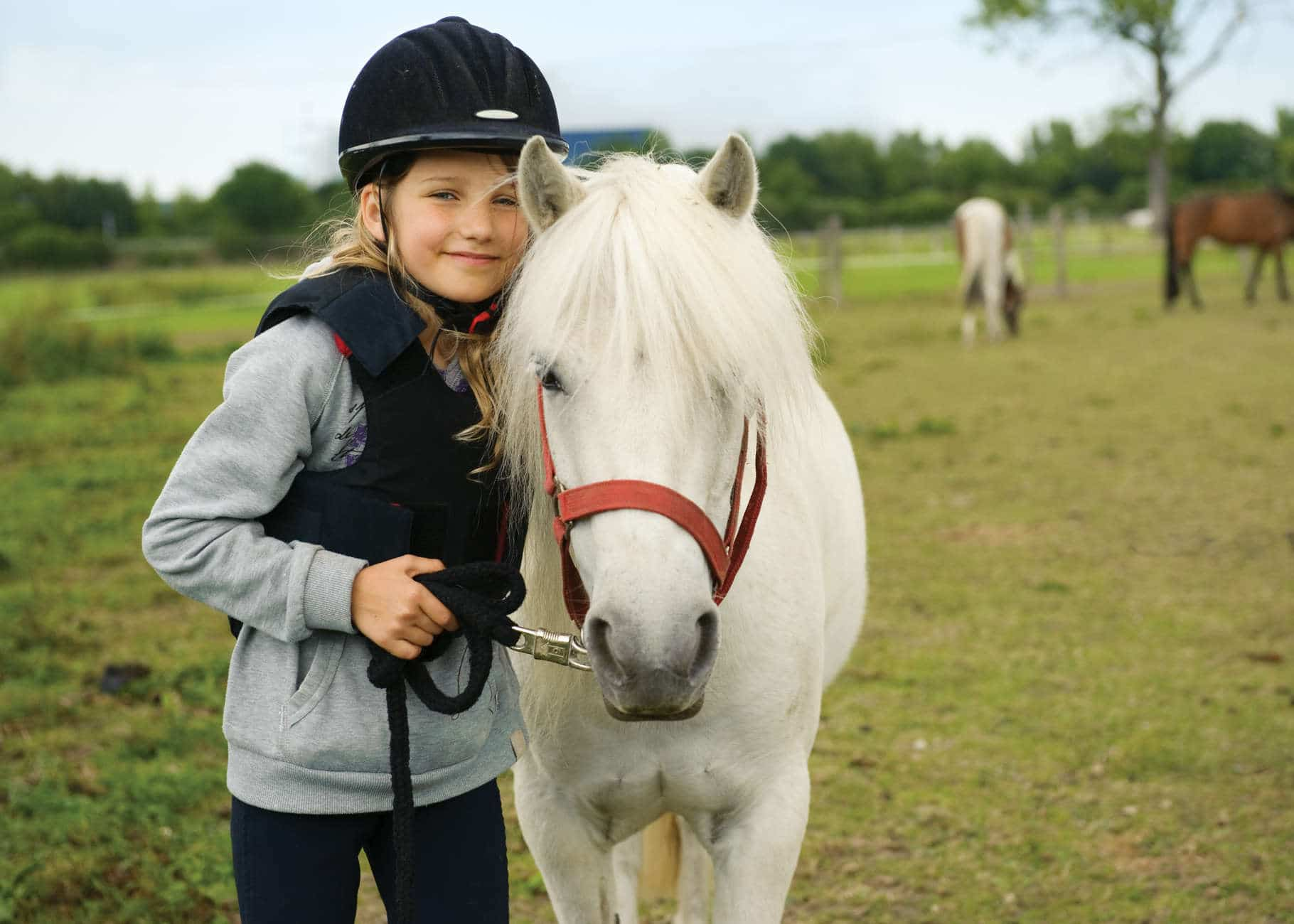 Homeschooling with Horses