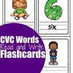 See and Write Flashcards: CVC I Words