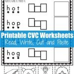 Read, Write, Cut and Paste {I Can Read CVC O Words}