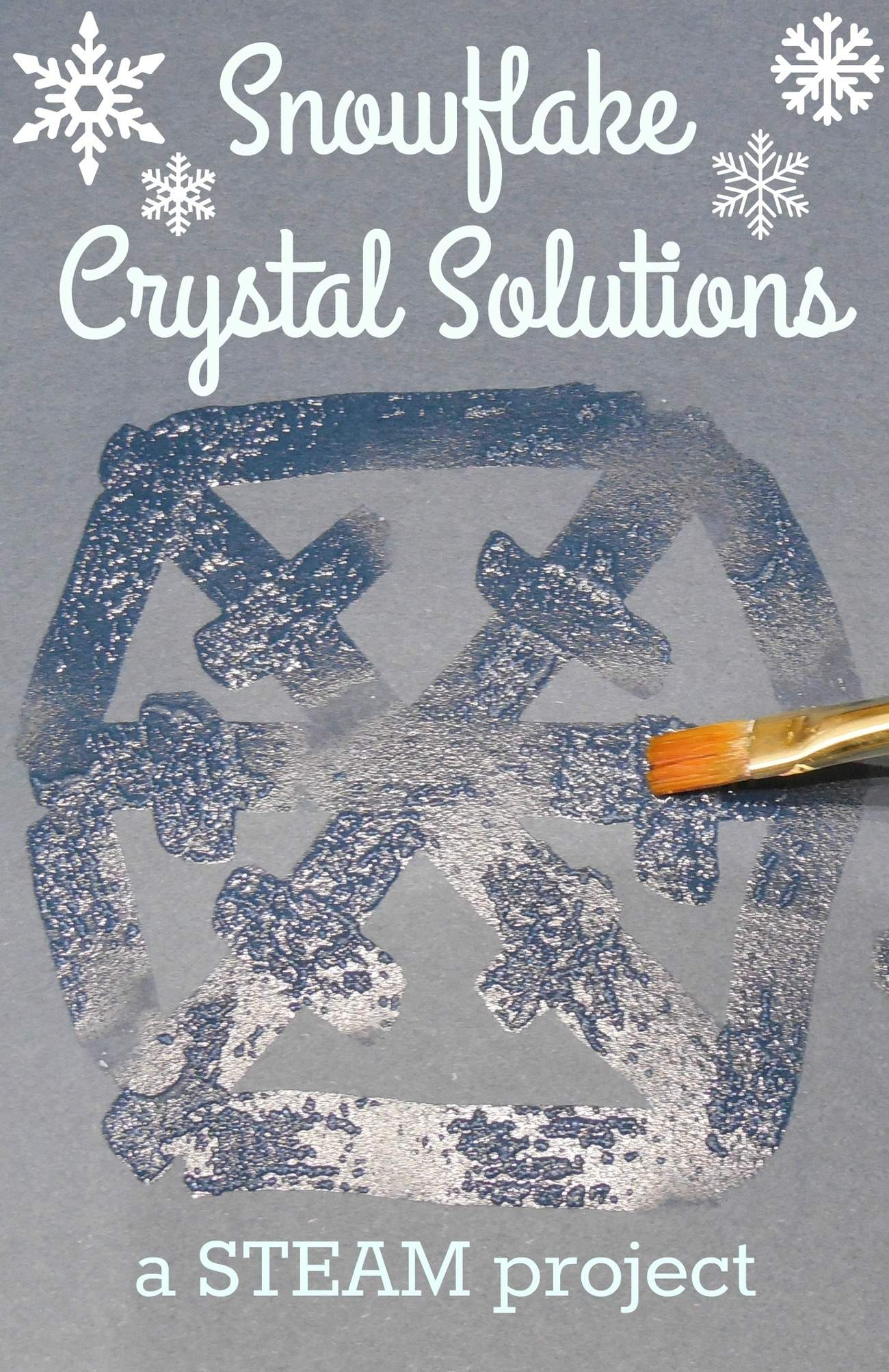 Snowflake Crystal Solutions: A STEAM Project