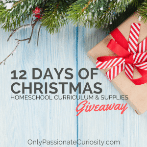 12 Days of Christmas Giveaways–Winners Announced!
