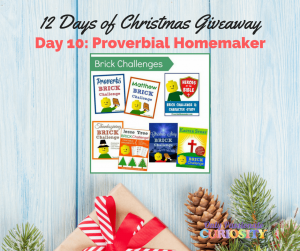 On the Tenth Day of Christmas….a Bonus Giveaway!