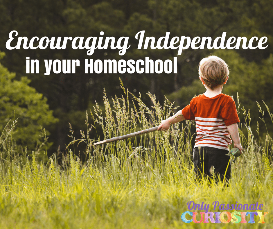 12 Ways to Support Independence in your Homeschool