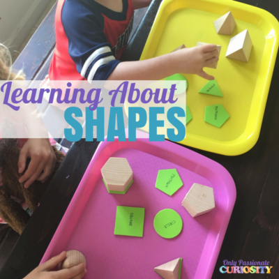 Learning About 3D Shapes