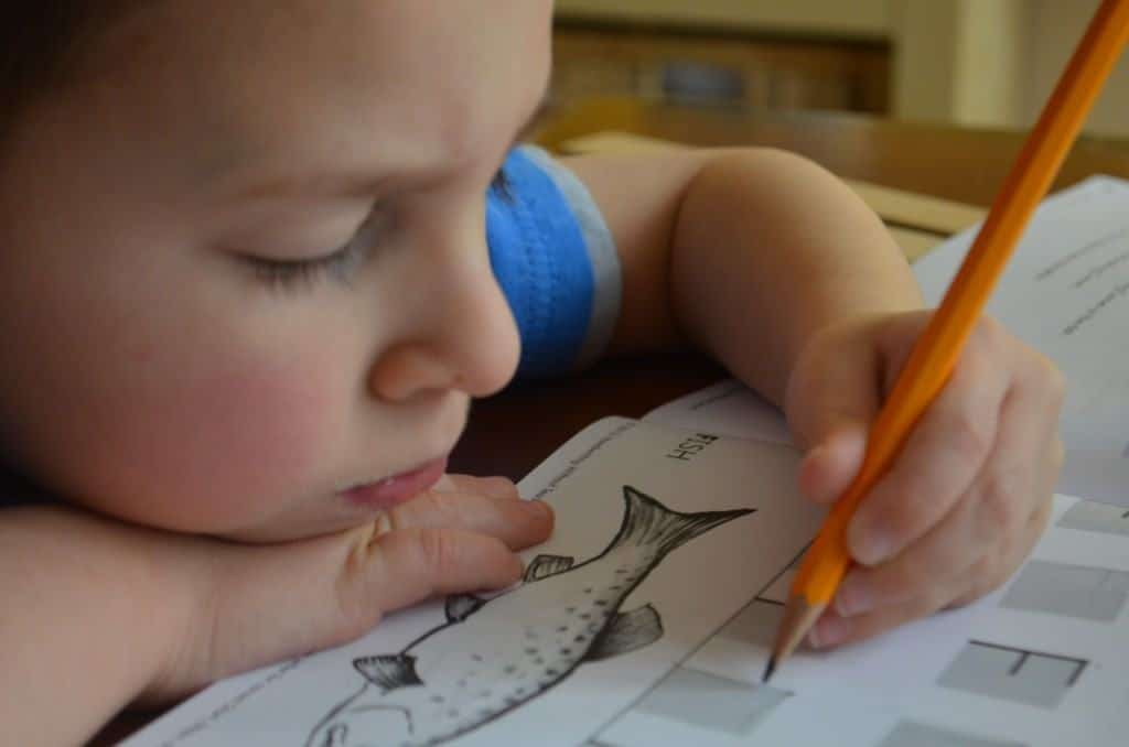 Handwriting Without Tears, A Multisensory Handwriting Program Review