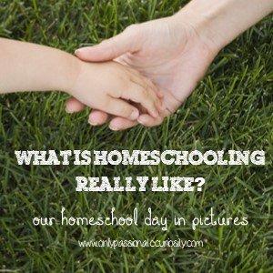 Homeschoolinglike
