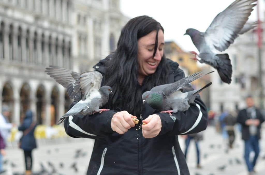 Field Trip Friday: Feeding the Birds in Piazza San Marco