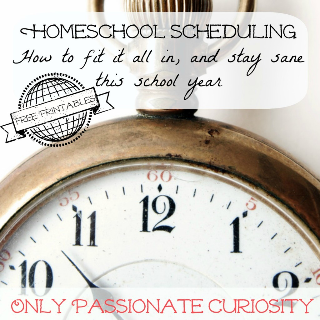 Scheduling 101 at Only Passionate Curiosity Tips, Tricks, Reviews and Giveaways!