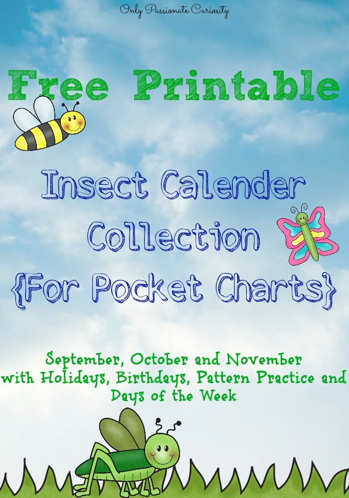 Insect Cards for Pocket Calenders {Free Printable}