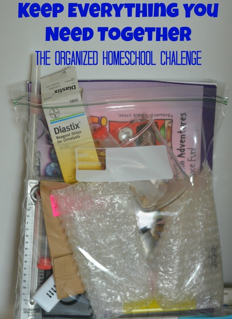 The Organized Homeschool Challege- I need to do this!