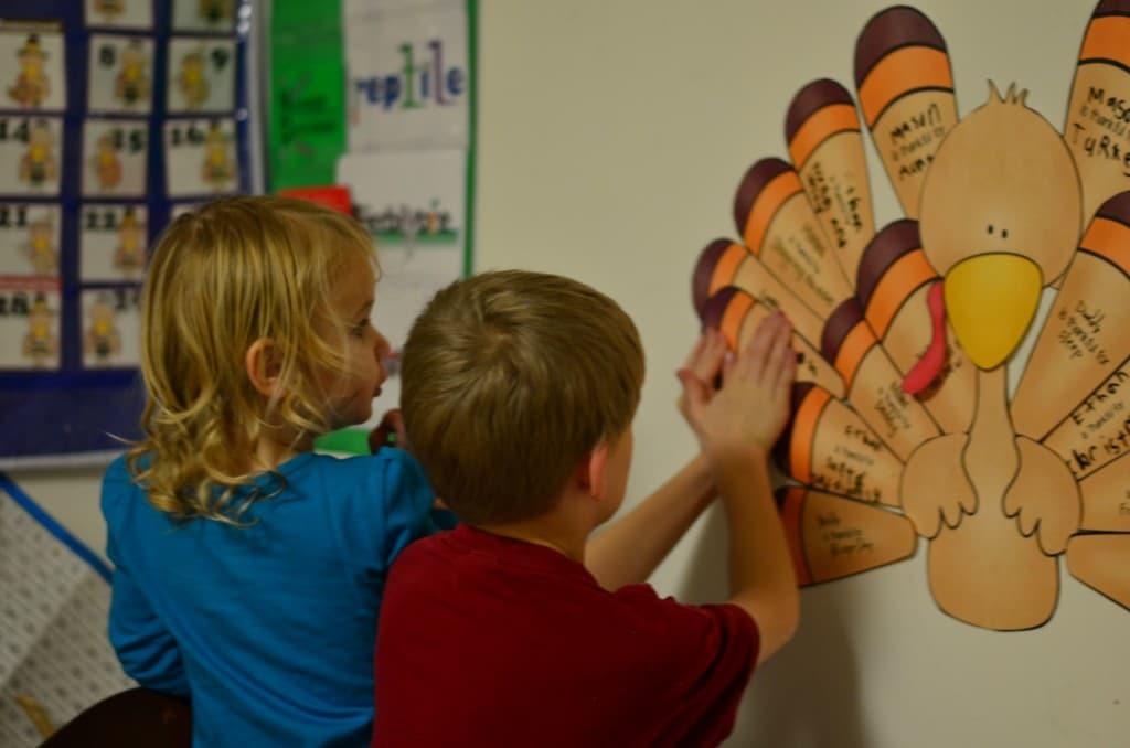 Feathers on a thankful turkey