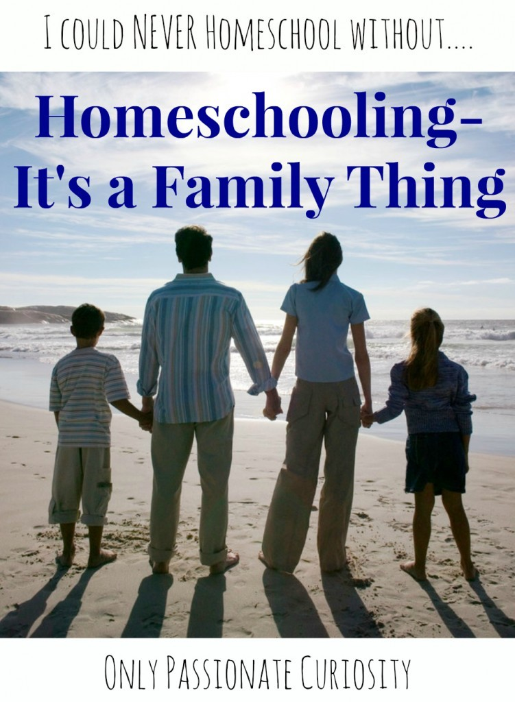 Homeschool Essentials: I could NEVER Homeschool without {Support}