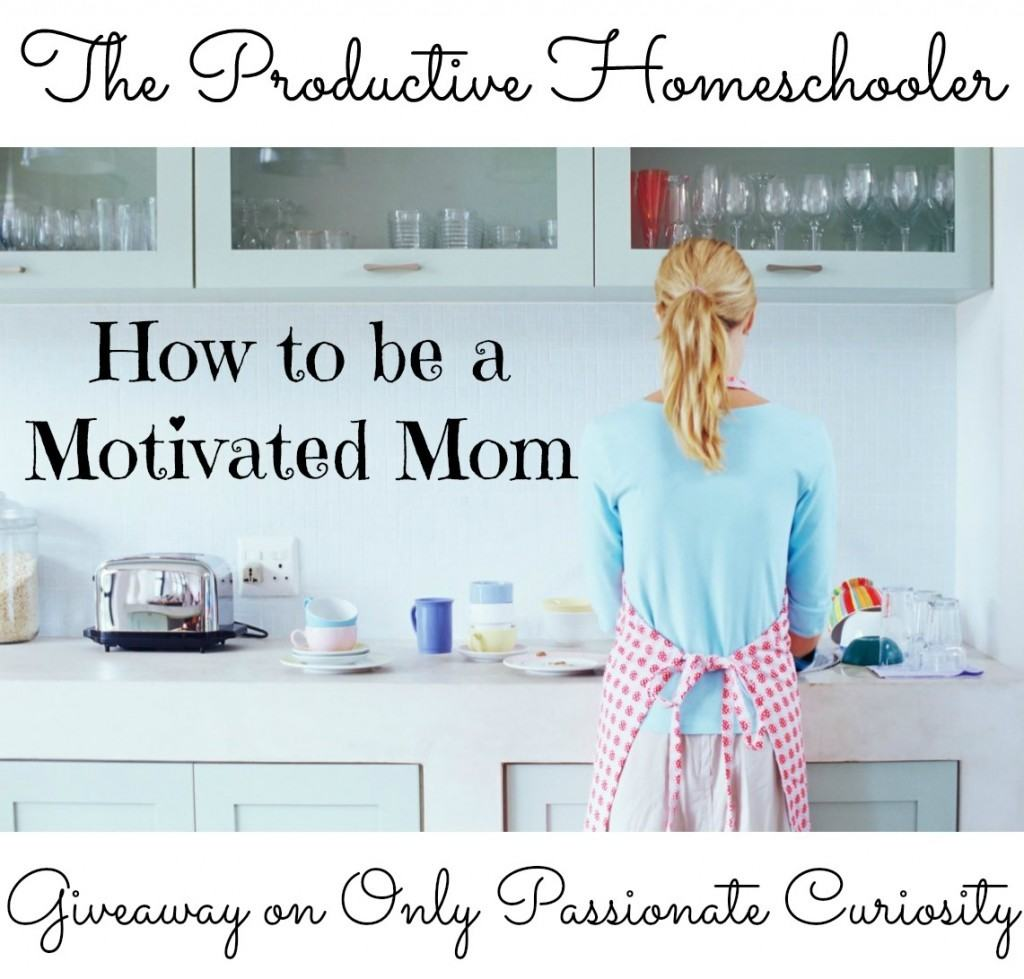 The Productive Homeschooler: Keeping Your Home Clean