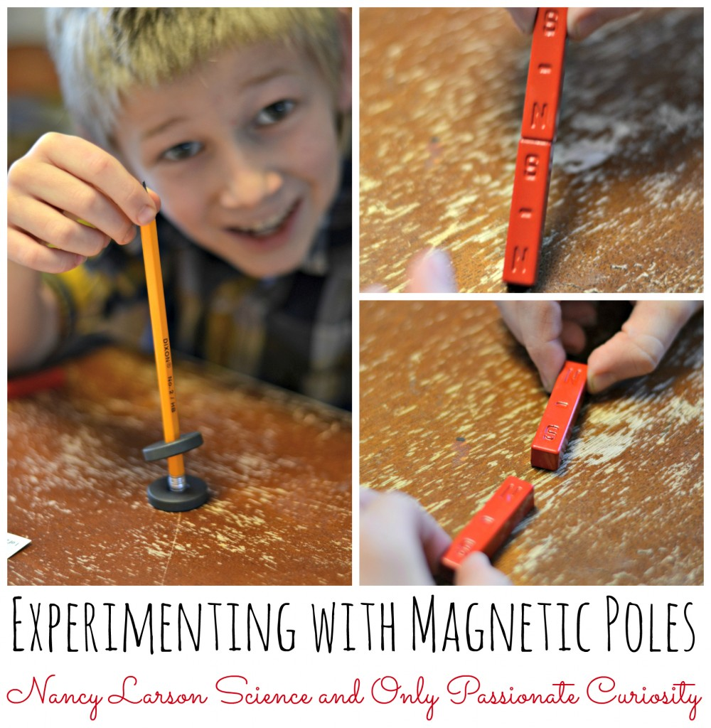 Magnetic poles and nancy larson science