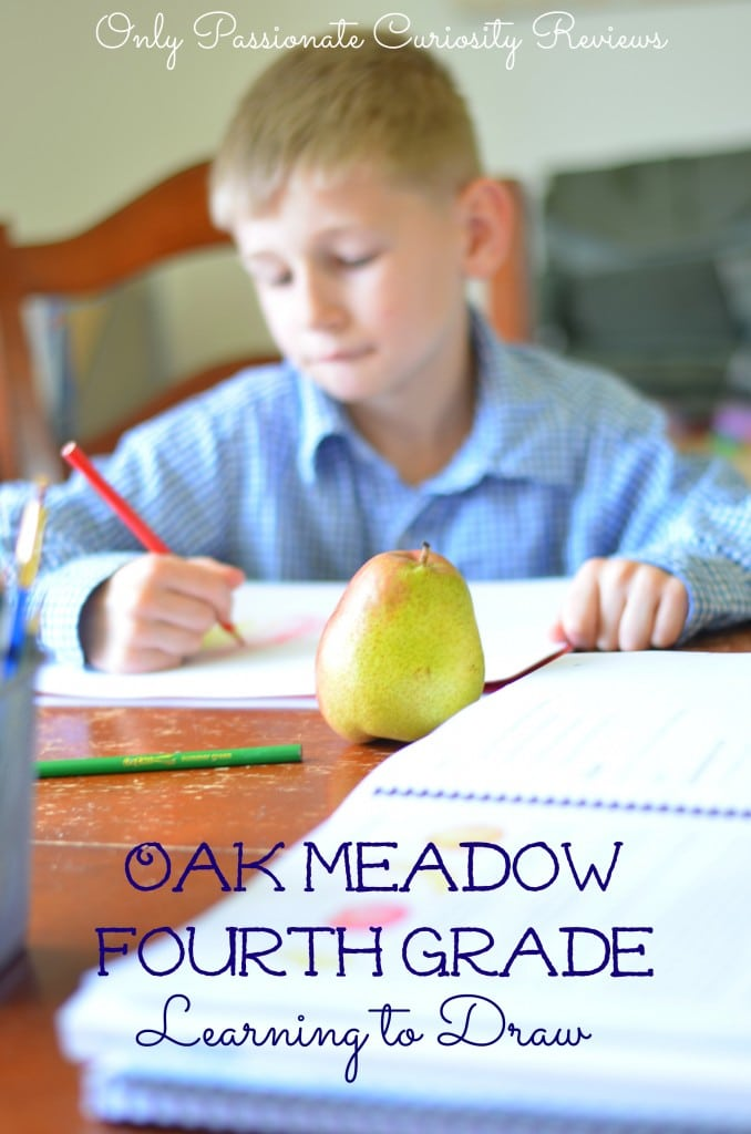 Win Oak Meadow- Only Passionate Curiosity Reviews grade 4