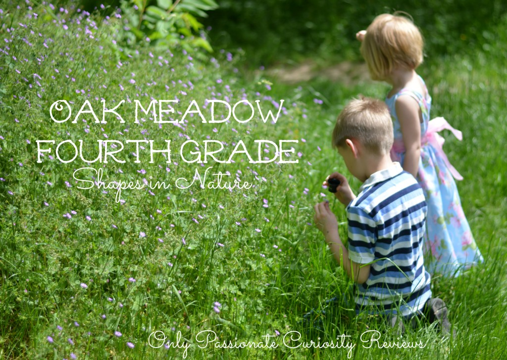 Win a Full Year of Oak Meadow until June 5- Shapes in Nature