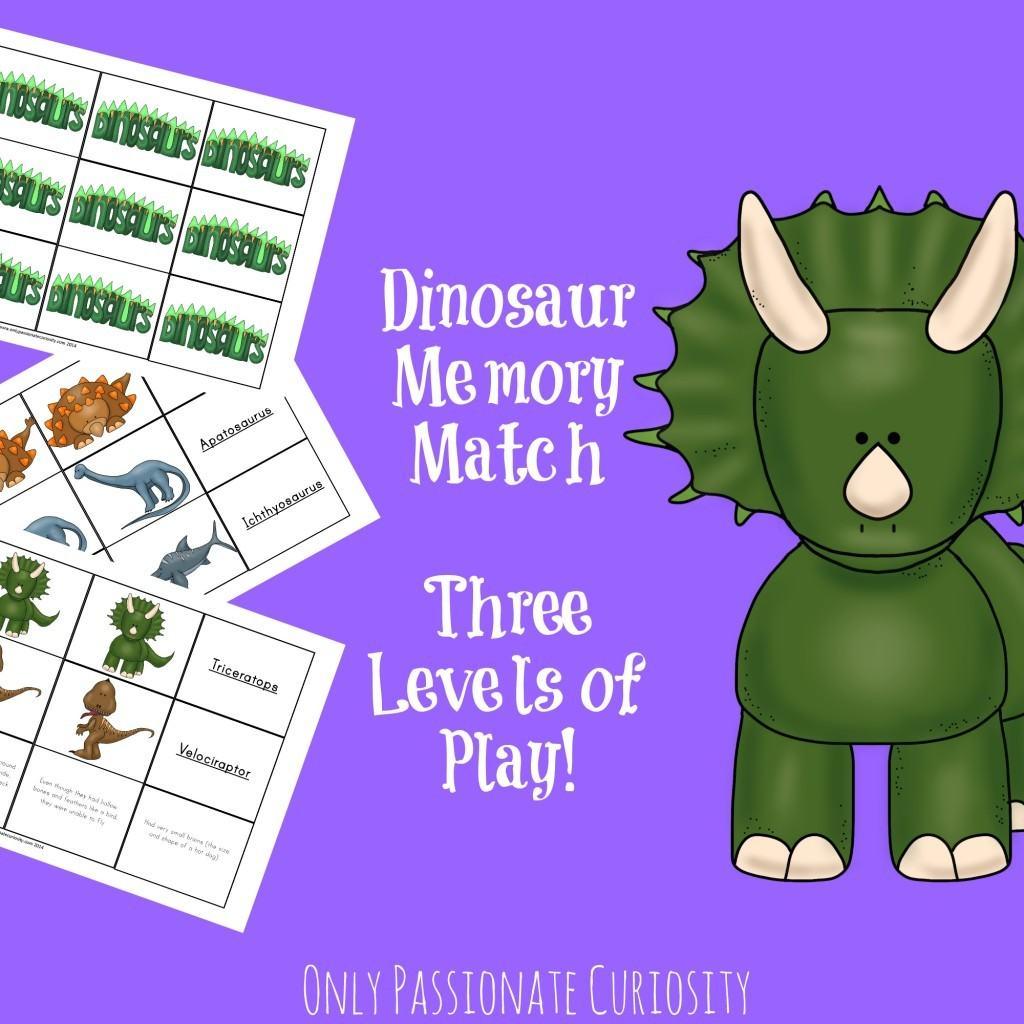 Dinosaur Fact Card Matching Game