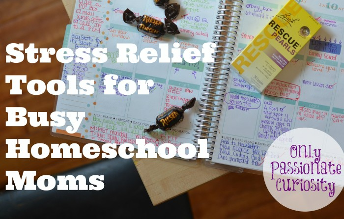 RESCUE your homeschool day