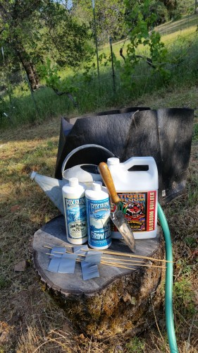 how-to gardening