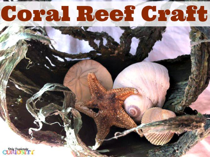 Coral Reef Craft