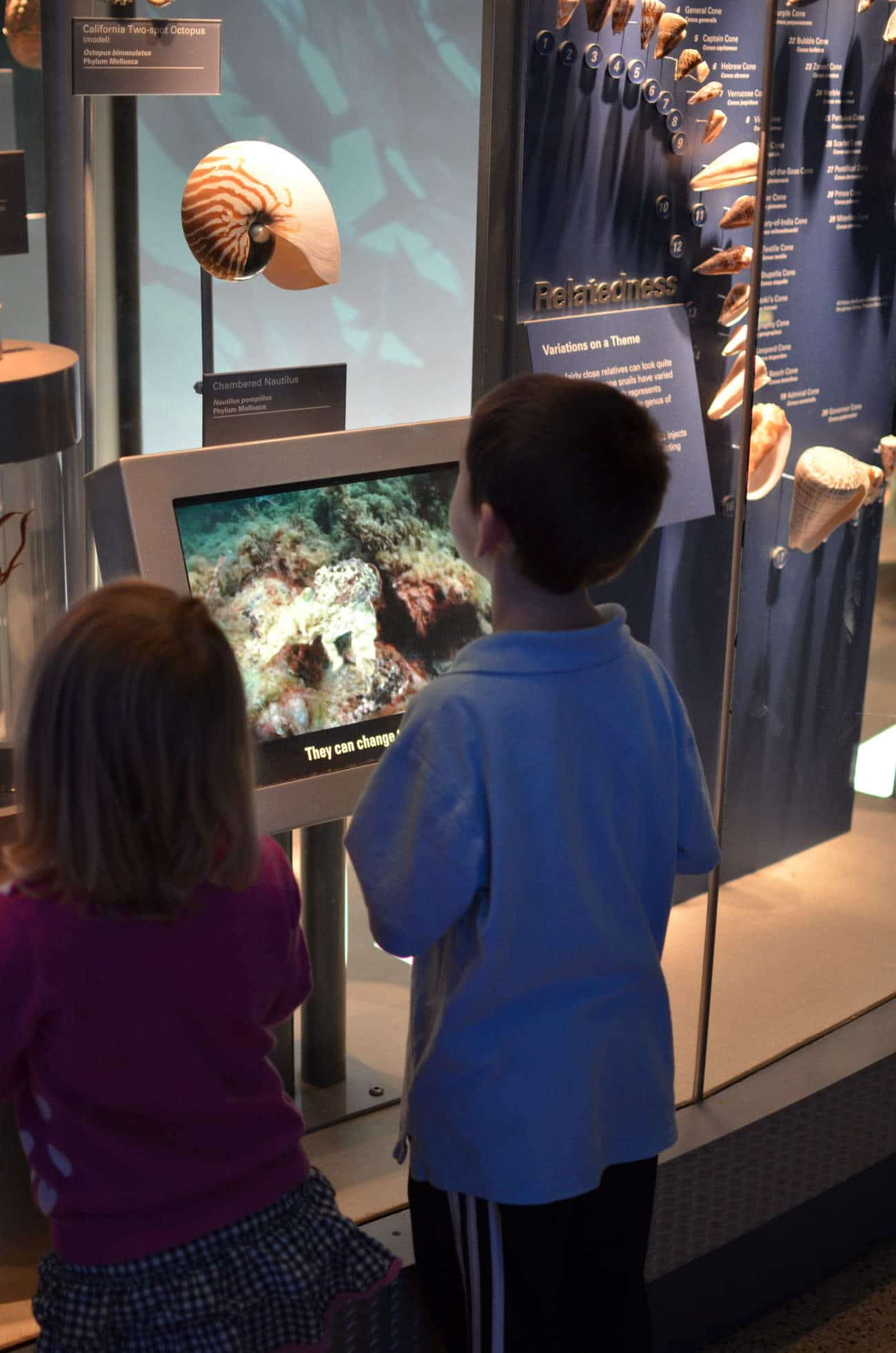 Field Trip Friday: Natural History Ocean Hall
