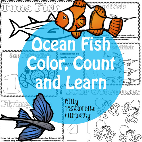 Ocean Fish Color Count and Learn