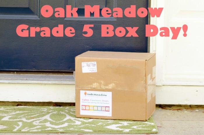Grade 5 Box Day