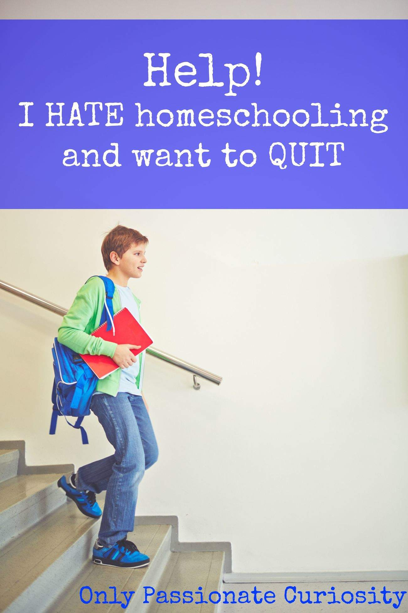 So you REALLY want to quit homeschooling