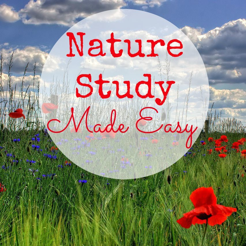 Nature Study Curriculum Round Up