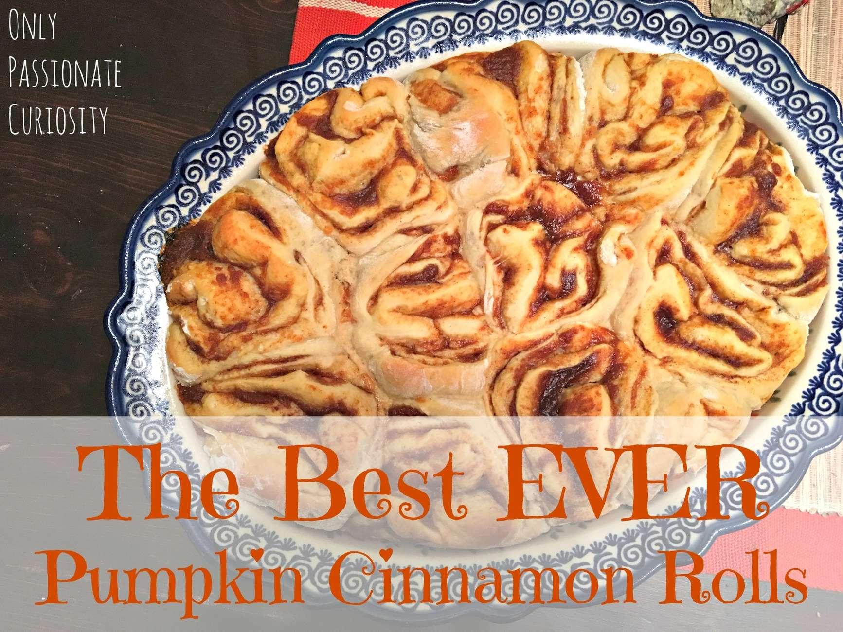 The World's Best Cinnamon Rolls
