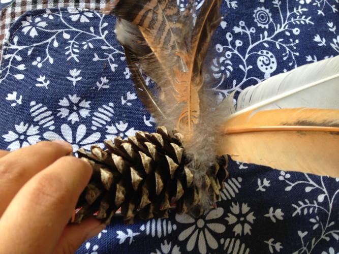 pinecone.2