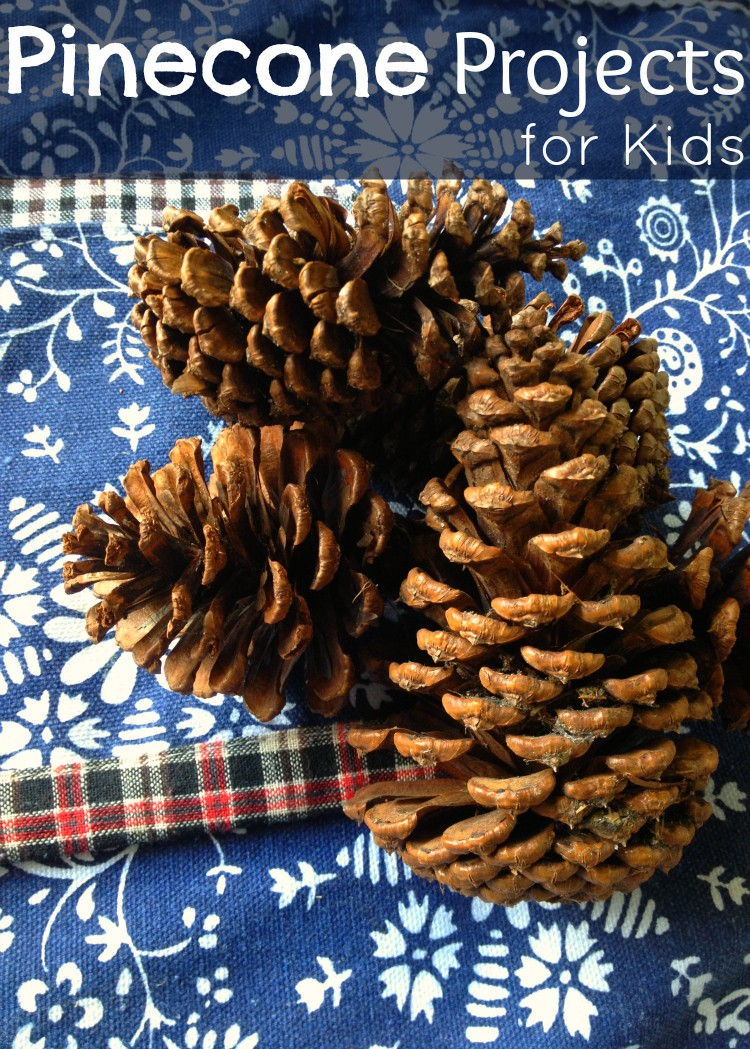 Pinecone Projects for Kids