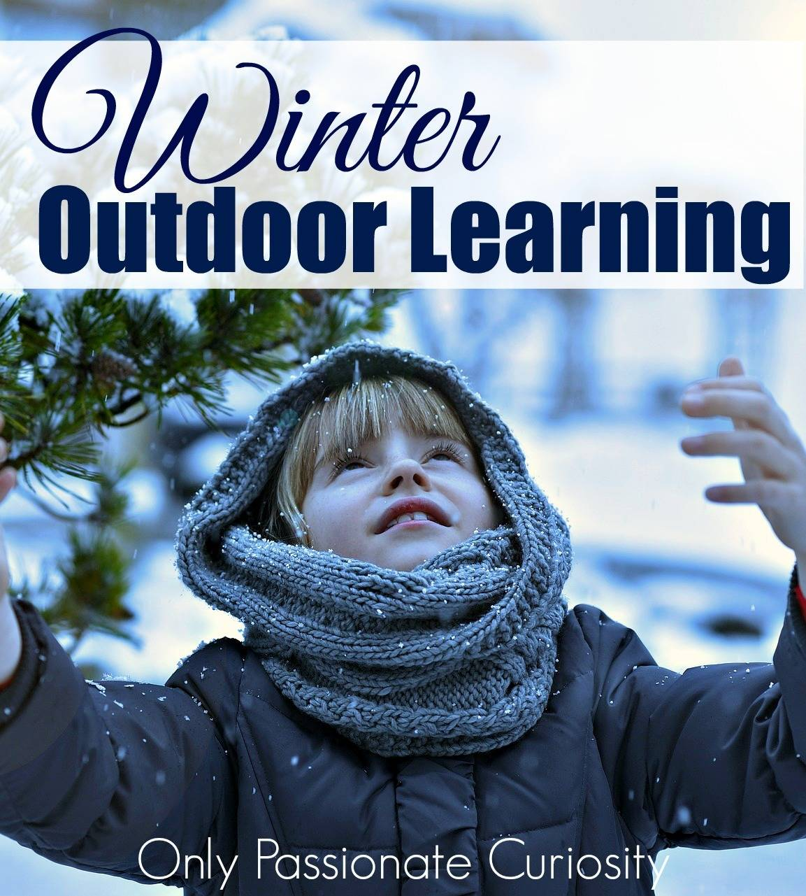 Who Says You Can't Learn Outdoors in Winter?