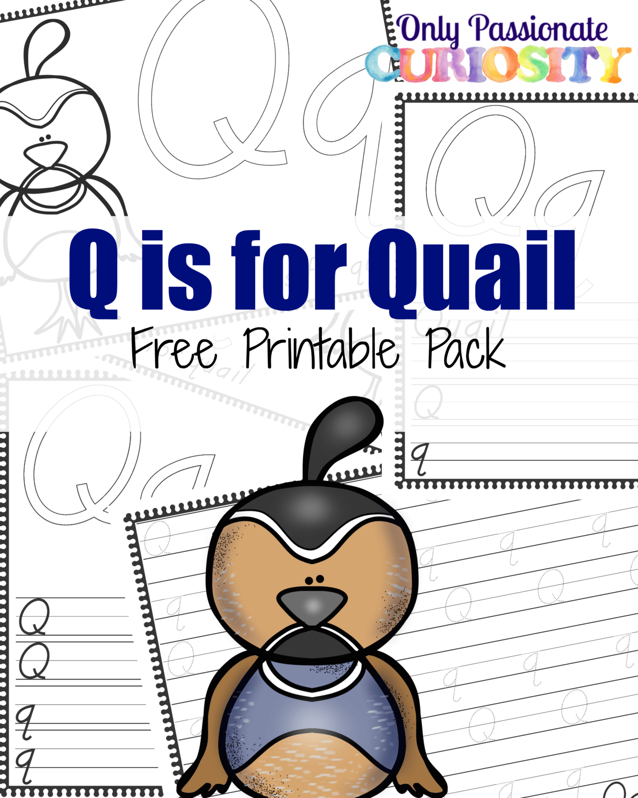Q Is For Quail Q is for Quail – Onl...