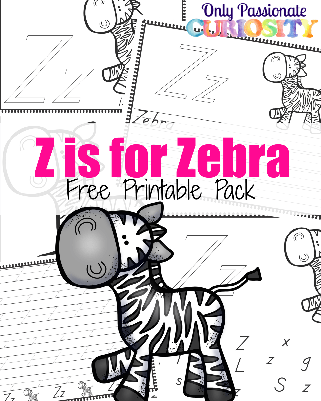 Z is for Zebra {ABCs for Me}