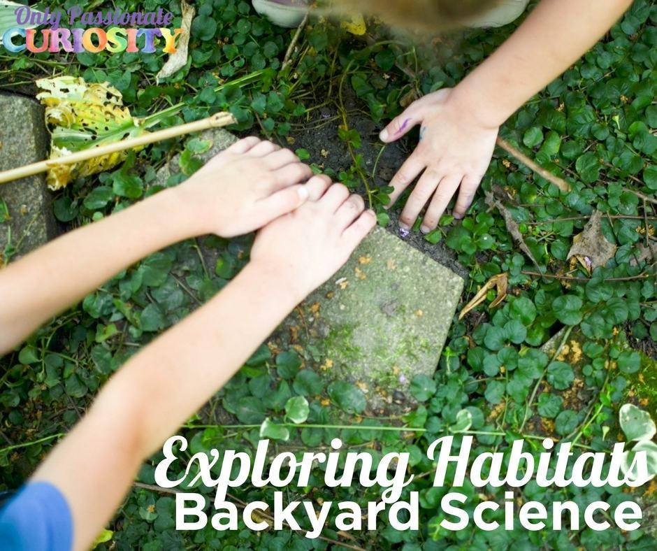 Exploring Habitats in Your Backyard