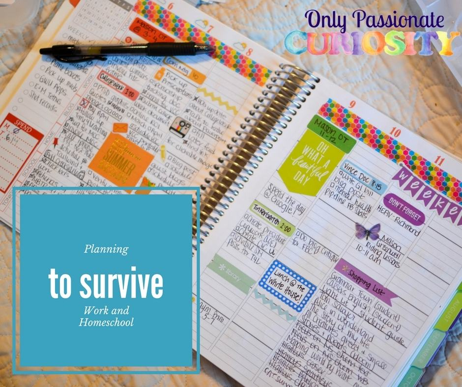 Plan to Survive: Working and Homeschool