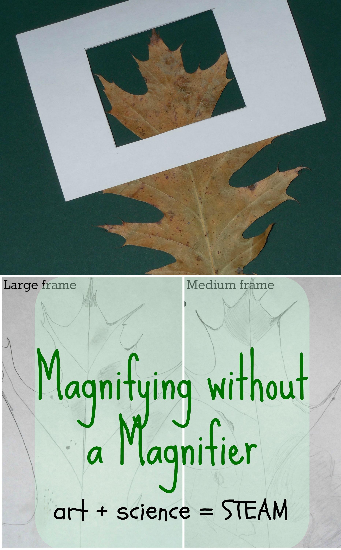 magnifier_pin