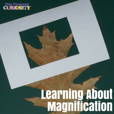 Magnify Without a Magnifier: A Science Art Project