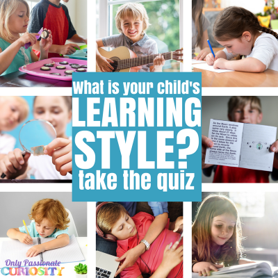 graphic relating to Learning Styles Quiz Printable titled discovering design and style quiz Archives - Simply just Pionate Desire